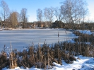 Петровское - школьный пруд