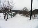Петровское - прогон